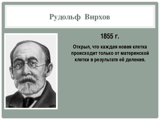 Рудольф Вирхов 1855 г. Открыл, что каждая новая клетка происходит только от м...