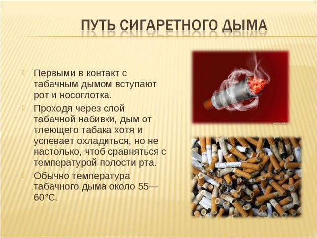 Первыми в контакт с табачным дымом вступают рот и носоглотка. Проходя через с...