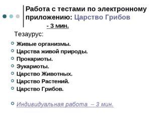 Работа с тестами по электронному приложению: Царство Грибов - 3 мин. Тезаурус