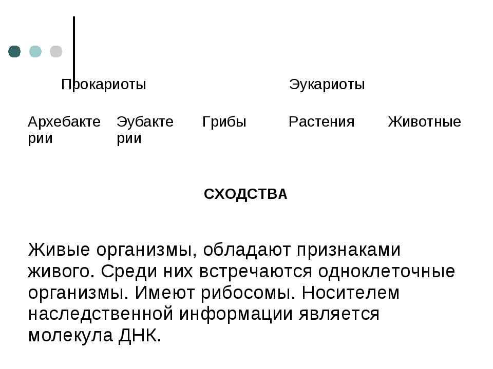 Прокариоты Эукариоты АрхебактерииЭубактерииГрибы Растения Животные СХО...