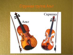 Струнная группа Альт