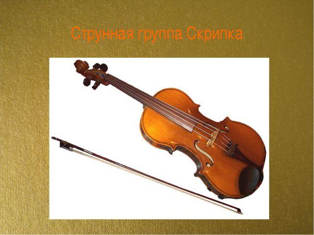 Струнная группа Скрипка