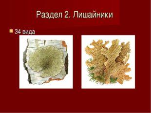 Раздел 2. Лишайники 34 вида