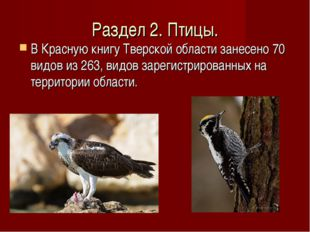 Раздел 2. Птицы. В Красную книгу Тверской области занесено 70 видов из 263, в