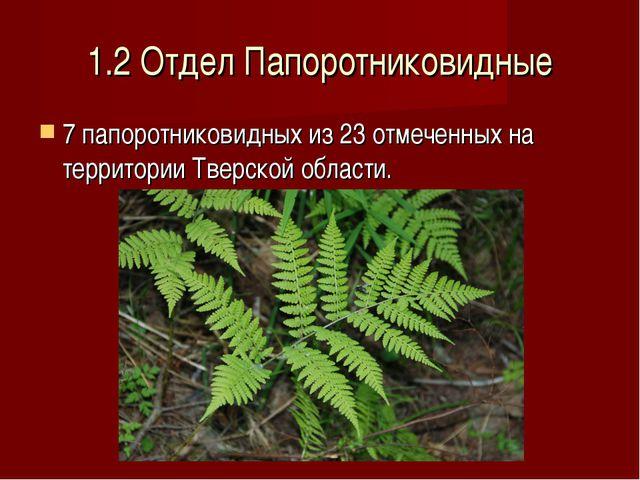 1.2 Отдел Папоротниковидные 7 папоротниковидных из 23 отмеченных на территори...