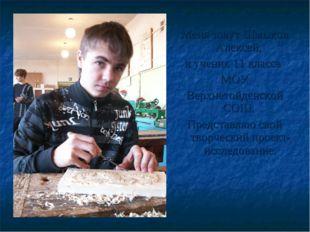 Меня зовут Шмыков Алексей, я ученик 11 класса МОУ Верхнетойденской СОШ. Предс