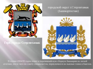Герб города Стерлитамак городской округ г.Стерлитамак (Башкортостан) В сезоне