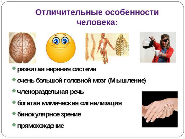 Отличительные особенности человека: развитая нервная система очень большой го...