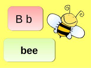 B b bee