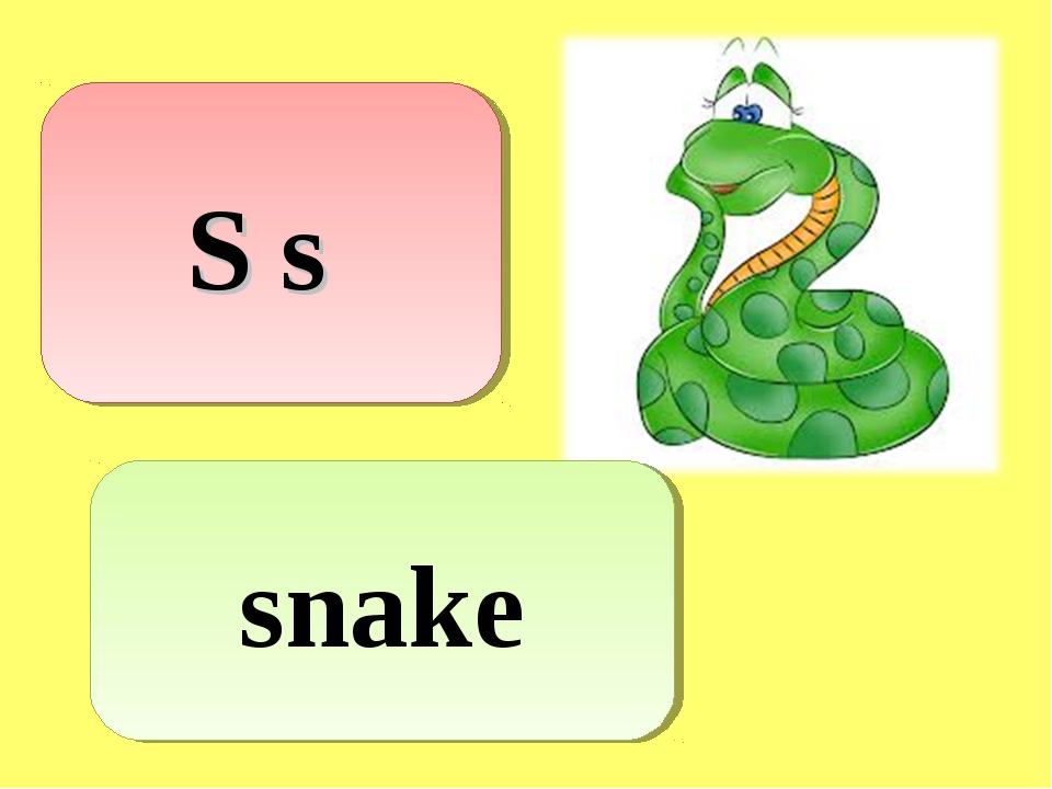 S s snake