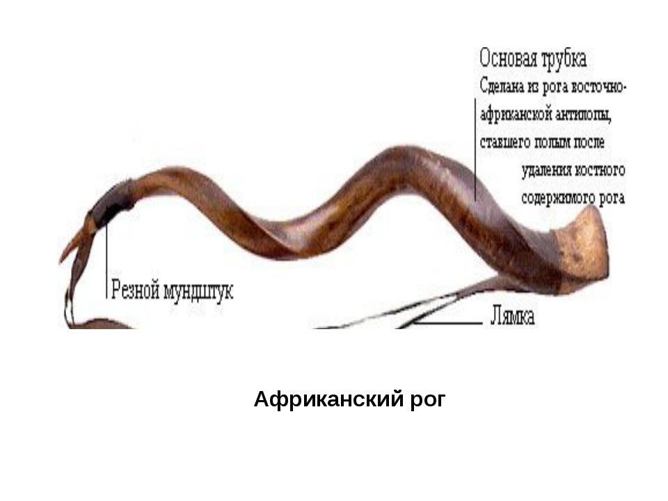 Африканский рог