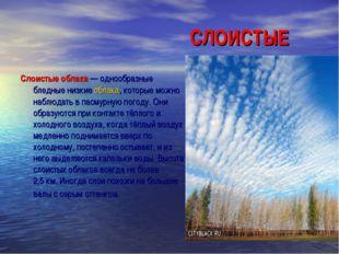СЛОИСТЫЕ Слоистые облака— однообразные бледные низкиеоблака, которые м