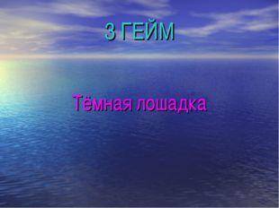 3 ГЕЙМ Тёмная лошадка