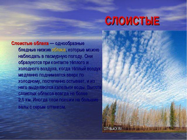 СЛОИСТЫЕ Слоистые облака— однообразные бледные низкиеоблака, которые м...