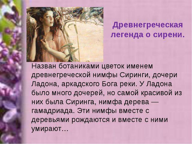 Древнегреческая легенда о сирени. Назван ботаниками цветок именем древнегрече...