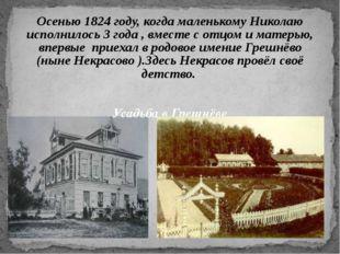 Осенью 1824 году, когда маленькому Николаю исполнилось 3 года , вместе с отцо