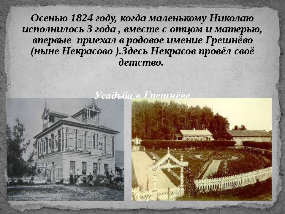 Осенью 1824 году, когда маленькому Николаю исполнилось 3 года , вместе с отцо...