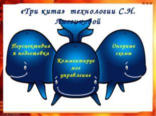 «Три кита» технологии С.Н. Лысенковой Перспективная подготовка Комментируемое