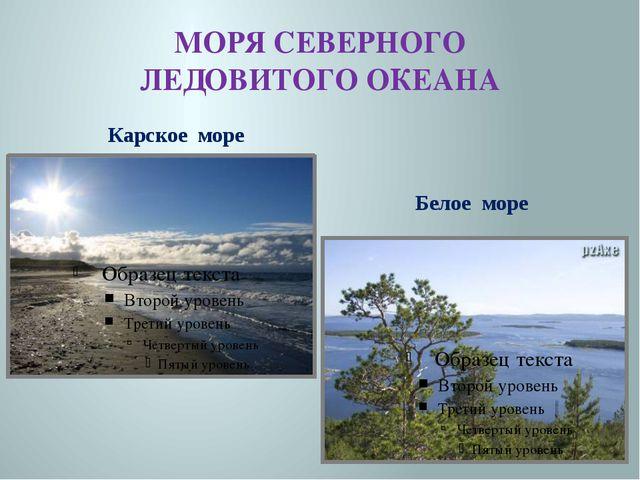 МОРЯ СЕВЕРНОГО ЛЕДОВИТОГО ОКЕАНА Карское море Белое море