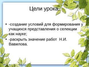 Цели урока. -создание условий для формирования у учащихся представления о сел