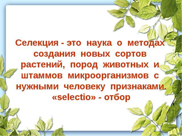 Селекция - это наука о методах создания новых сортов растений, пород животных...