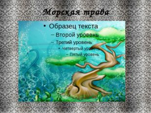 Морская трава