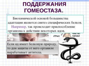БИОХИМИЧЕСКИЙ МЕХАНИЗМ ПОДДЕРЖАНИЯ ГОМЕОСТАЗА. в основе поведенческих реакций