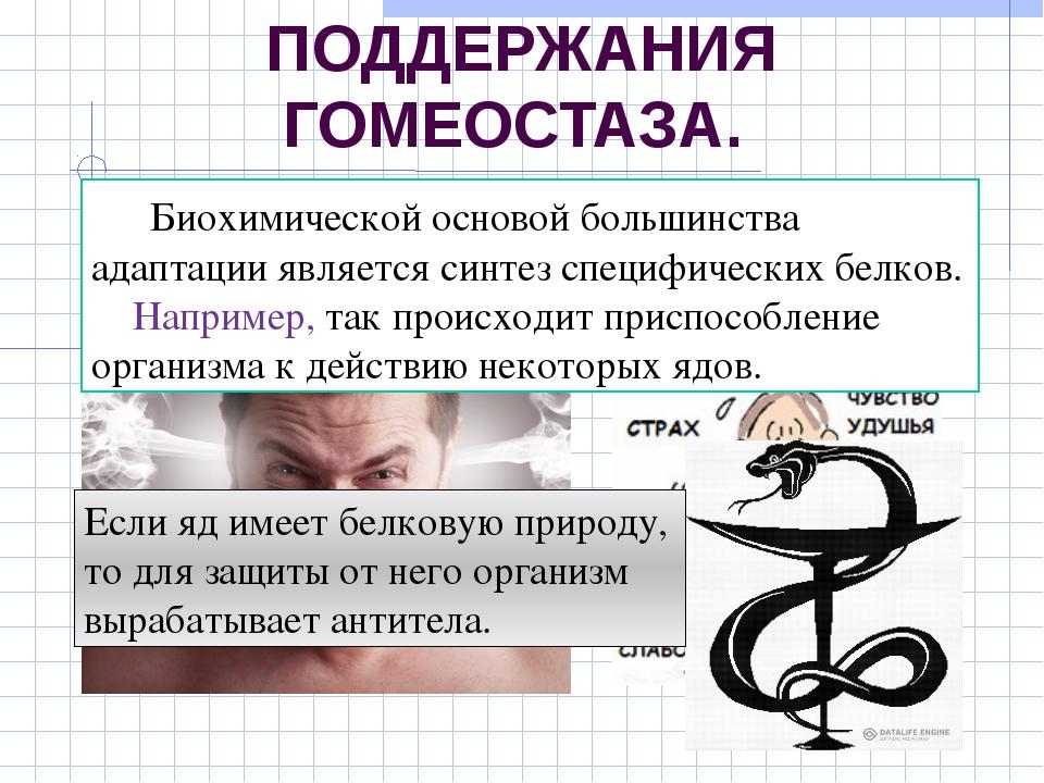БИОХИМИЧЕСКИЙ МЕХАНИЗМ ПОДДЕРЖАНИЯ ГОМЕОСТАЗА. в основе поведенческих реакций...