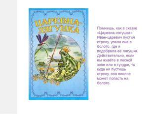 Помнишь, как в сказке «Царевна-лягушка» Иван-царевич пустил стрелу, упала она