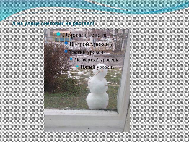 А на улице снеговик не растаял!