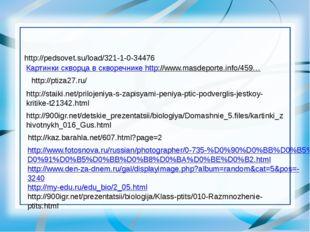 http://pedsovet.su/load/321-1-0-34476 Картинки скворца в скворечнике http://