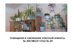 Освещение и озеленение классной комнаты № 206 МБОУ СОШ № 29