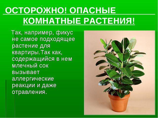 Так, например, фикус не самое подходящее растение для квартиры.Так как, соде...