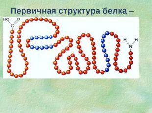 Первичная структура белка – последовательность чередования аминокислотных ост