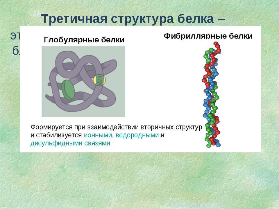 Третичная структура белка – это способ укладки спиральной структуры благодаря...