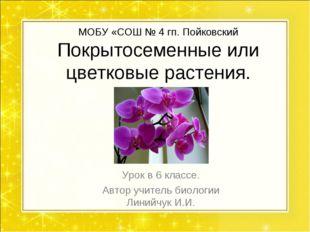 МОБУ «СОШ № 4 гп. Пойковский Покрытосеменные или цветковые растения. Урок в 6