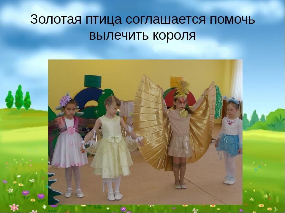 Золотая птица соглашается помочь вылечить короля