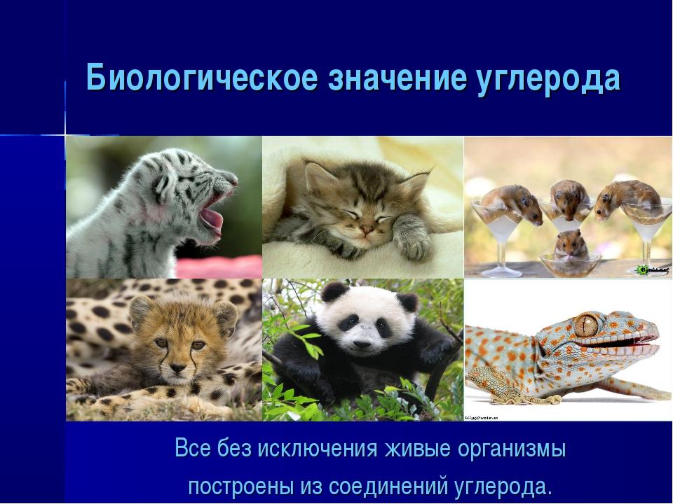 Биологическое значение углерода Все без исключения живые организмы построены...