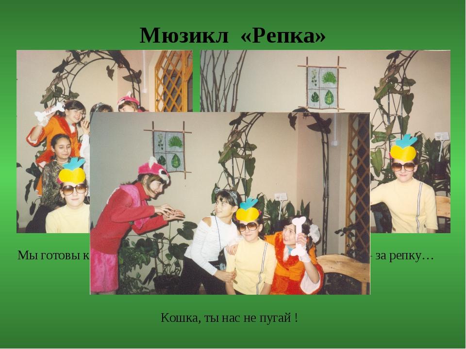 Мюзикл «Репка» Мы готовы к выступлению… Бабка – за дедку, дедка – за репку… К...