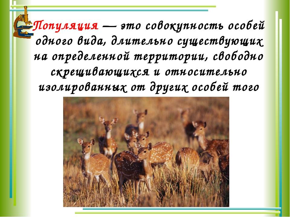 Популяция— это совокупность особей одного вида, длительно существующих на оп...
