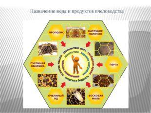 Назначение меда и продуктов пчеловодства