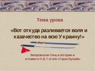 Тема урока Запорожская Сечь в истории и в повести Н.В. Гоголя «Тарас Бульба»