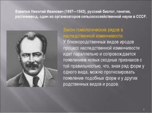 * Вавилов Николай Иванович (1887—1943), русский биолог, генетик, растениевод,