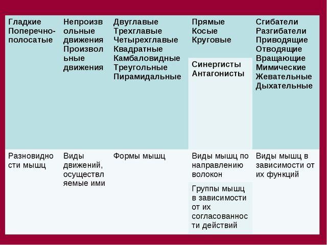 Гладкие Поперечно-полосатыеНепроизвольные движения Произвольные движения Дв...