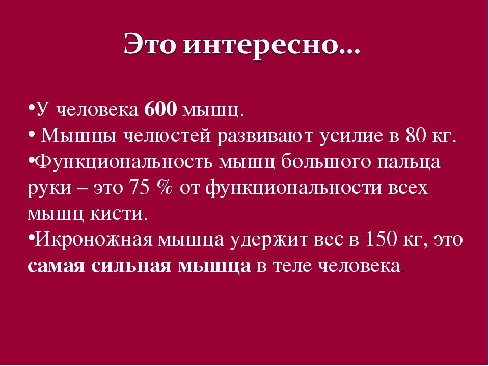 У человека 600 мышц. Мышцы челюстей развивают усилие в 80 кг. Функциональност...