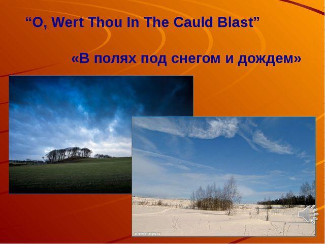 """O, Wert Thou In The Cauld Blast"" «В полях под снегом и дождем»"