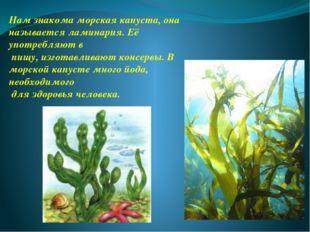 Нам знакома морская капуста, она называется ламинария. Её употребляют в пищу,