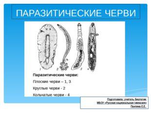 ПАРАЗИТИЧЕСКИЕ ЧЕРВИ Подготовила: учитель биологии МБОУ «Русская национальная