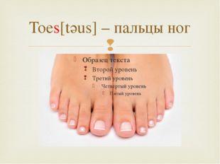 Toes[tәus] – пальцы ног 