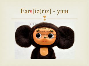 Ears[iә(r)z] - уши 